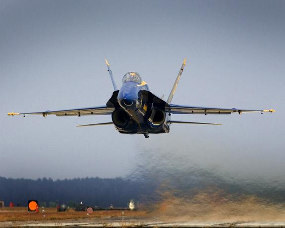 Бакланы атаковали пассажирский самолет на Урале