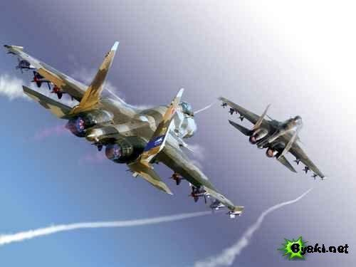 В Новосибирске аварийно сел самолет